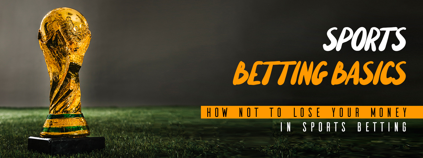 Sports Betting Basics - How Not to Lose Your Money in Sports Betting